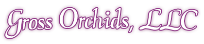 Gross Orchids, LLC